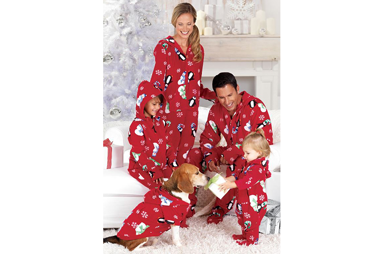 dog and owners wearing matching pajamas