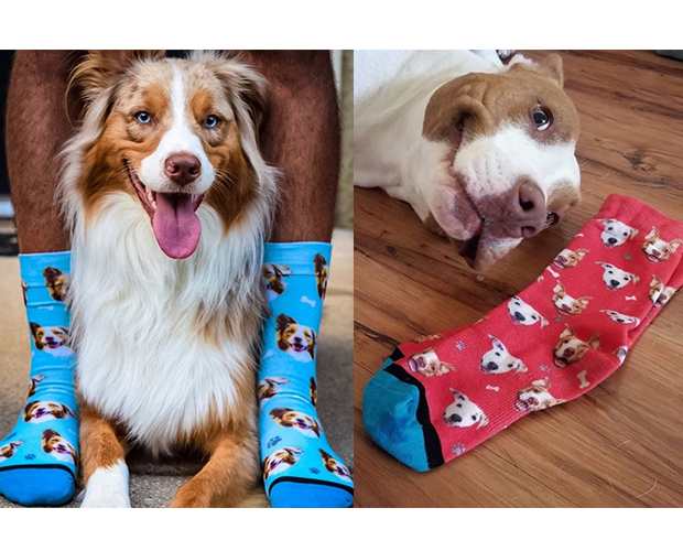 dog mom gifts dog socks