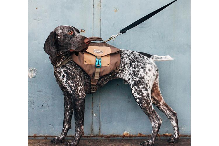 outward-hound-size-chart