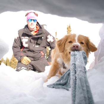 View from inside a snow cave with SAR team and dog outside looking in