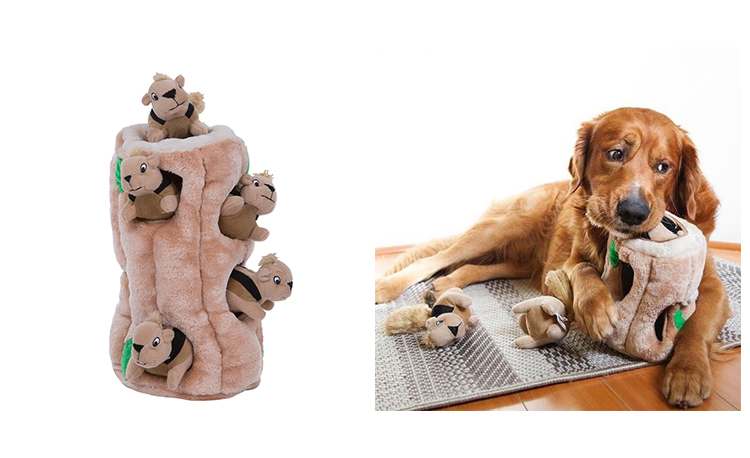 indoor dog games and toys