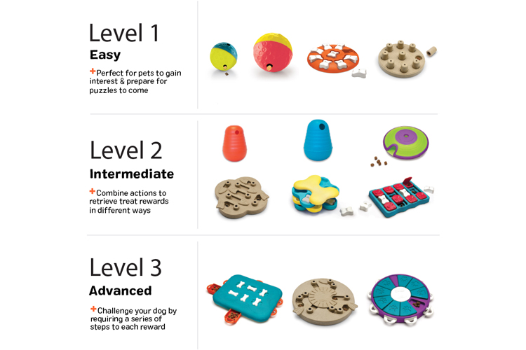 Interactive dog toys with treats