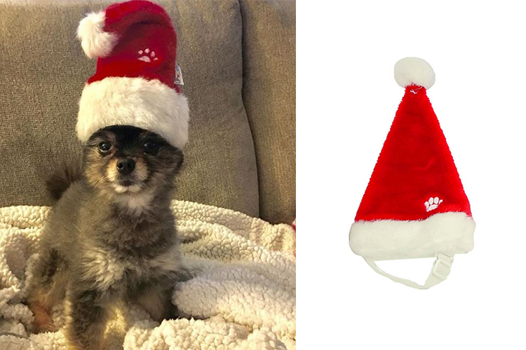 Christmas Hats For Dogs.Holiday Hats For Puppies Buzzwoof By Outward Hound
