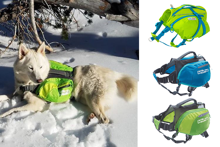 shop dog backpacks for walking and hiking in the snow