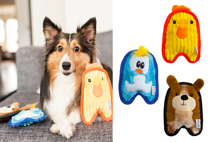 durable toys for puppies and small dogs
