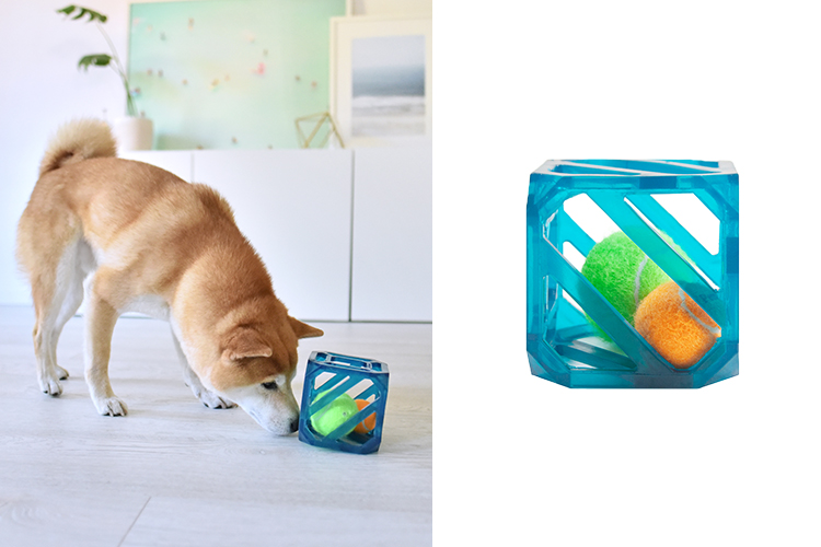 interactive dog toys and games