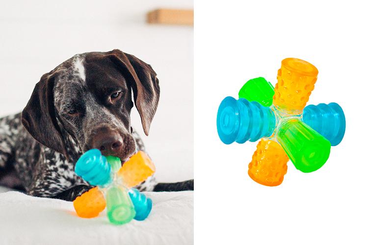 new dog toys