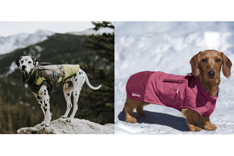 Coats for dogs of all sizes